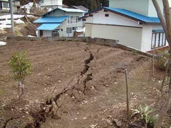 斎藤アヤさん宅畑の地割れ